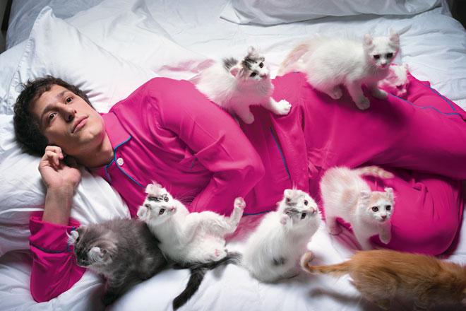 Foto com gatos
